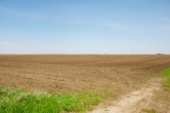 Iowa corn field ready for planting